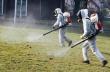 На 11 юли ще се извърши повторно пръскане срещу бълхи и кърлежи