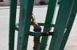 Отново вандалски набези върху дръвчетата в Горна Оряховица
