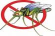 На 30 юни в Горна Оряховица ще се извърши първото за годината третиране срещу комари