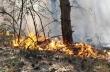 Превантивни мерки от РСПБЗН - Горна Оряховица за предстоящия пожароопасен сезон в горските територии